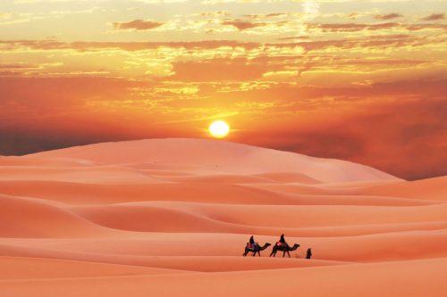 Sahara & Arabia Deserts