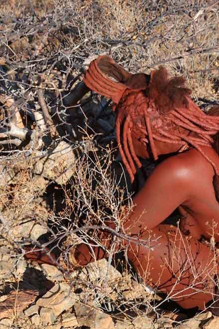 Himba-Woman-Harvesting-Resin